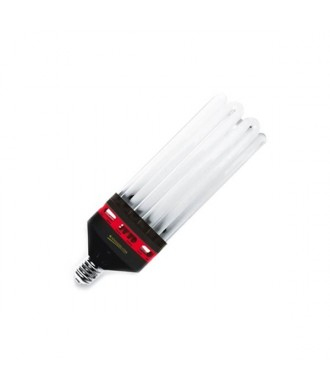 Advanced Star Pro Star CFL